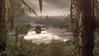 Primordial Looking Wetlands on a Misty Morning, Abel Tasman NP