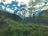 2018-03-05 - 32 Tranz Alpine Kiwi Rail NZ