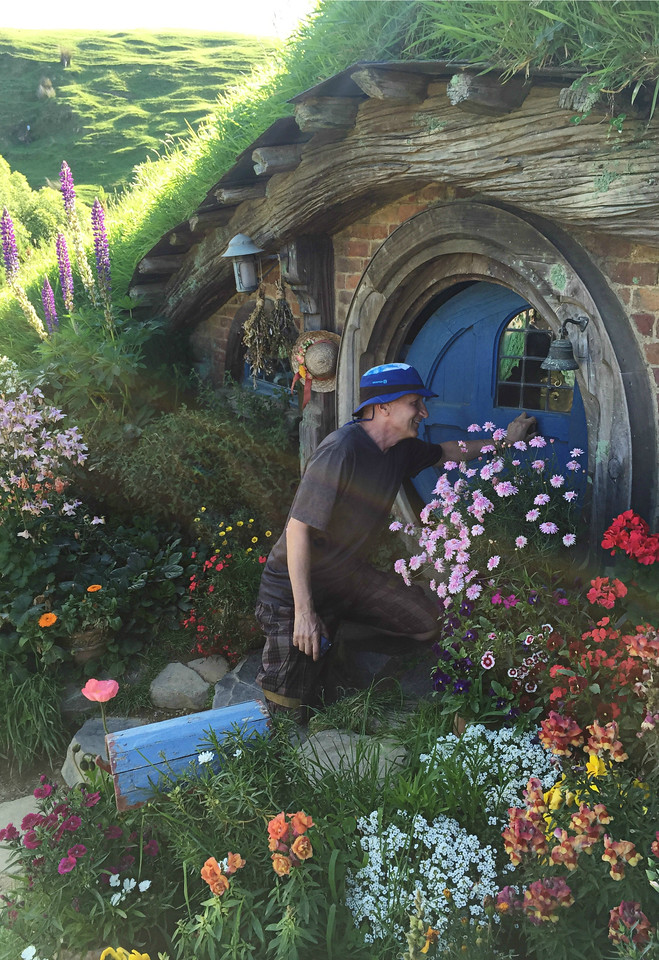 The hobbit holes have unique details in the windows and gardens.