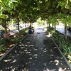 2018-02-16 - 10 Wynyard Quarter public space in Auckland, NZ 02