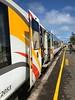 2018-03-05 - 27 Tranz Alpine Kiwi Rail NZ