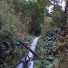 2018-02-26 - Waterfall 01 near Kinloch NZ
