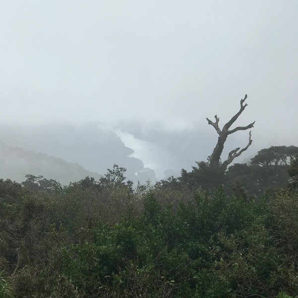 2018-02-24 - Doubtful Sound, NZ 01