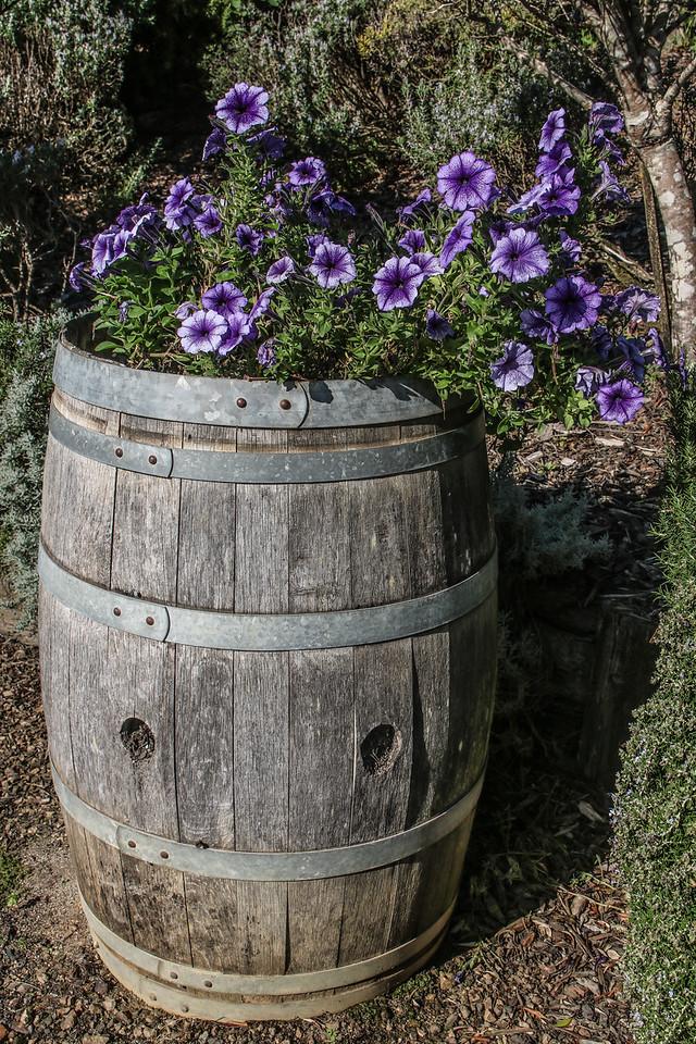 Mudbrick Vineyard