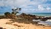 Kuaotunu Beach - Coromandel