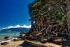 Torehina Beach