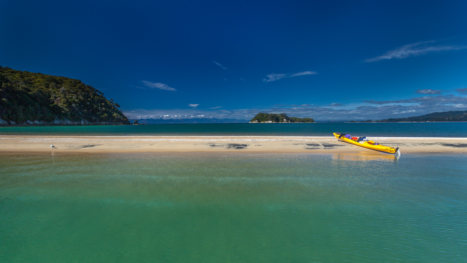 Enjoying the beauty of Abel Tasman by Kayak.