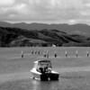 The upper Hokianga Harbour at Kohukohu.