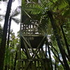 The 12m high forest tower in Bismark Road near the camping area 2011