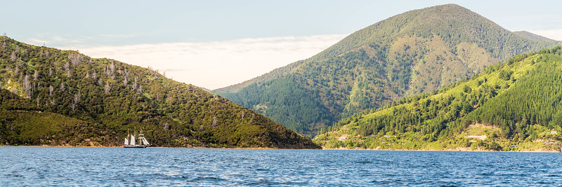Sailing ship on Queen Charlotte Sound
