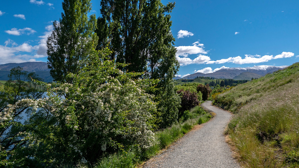 Day Trips From Queenstown: Path around Lake Hayes
