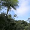 The surrounding landscape.
