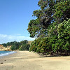 Motuihe Island 5/09