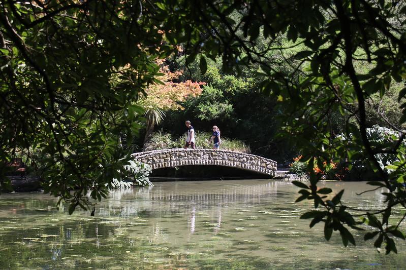 Hagley Park & Botanic Gardens