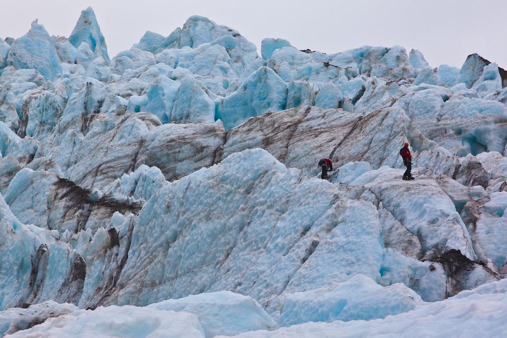 fox glacier ice climbers in new zealand
