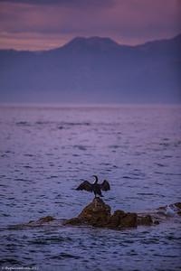 New-Zealand-landscapes-6