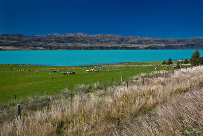 South_island_new_zealand_landscapes