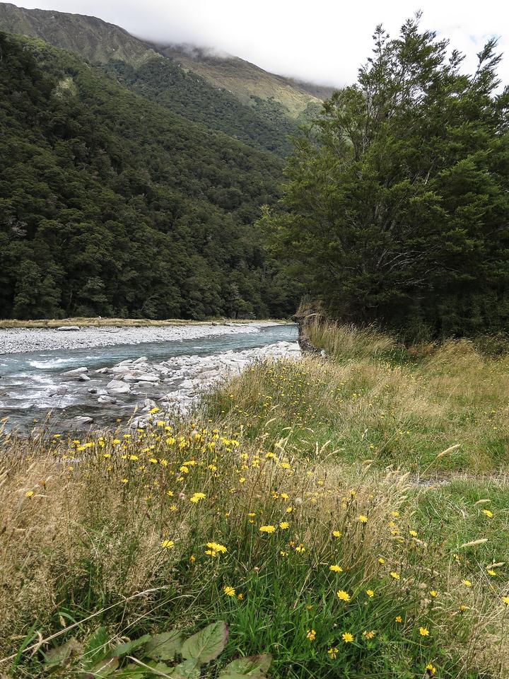Makarora River