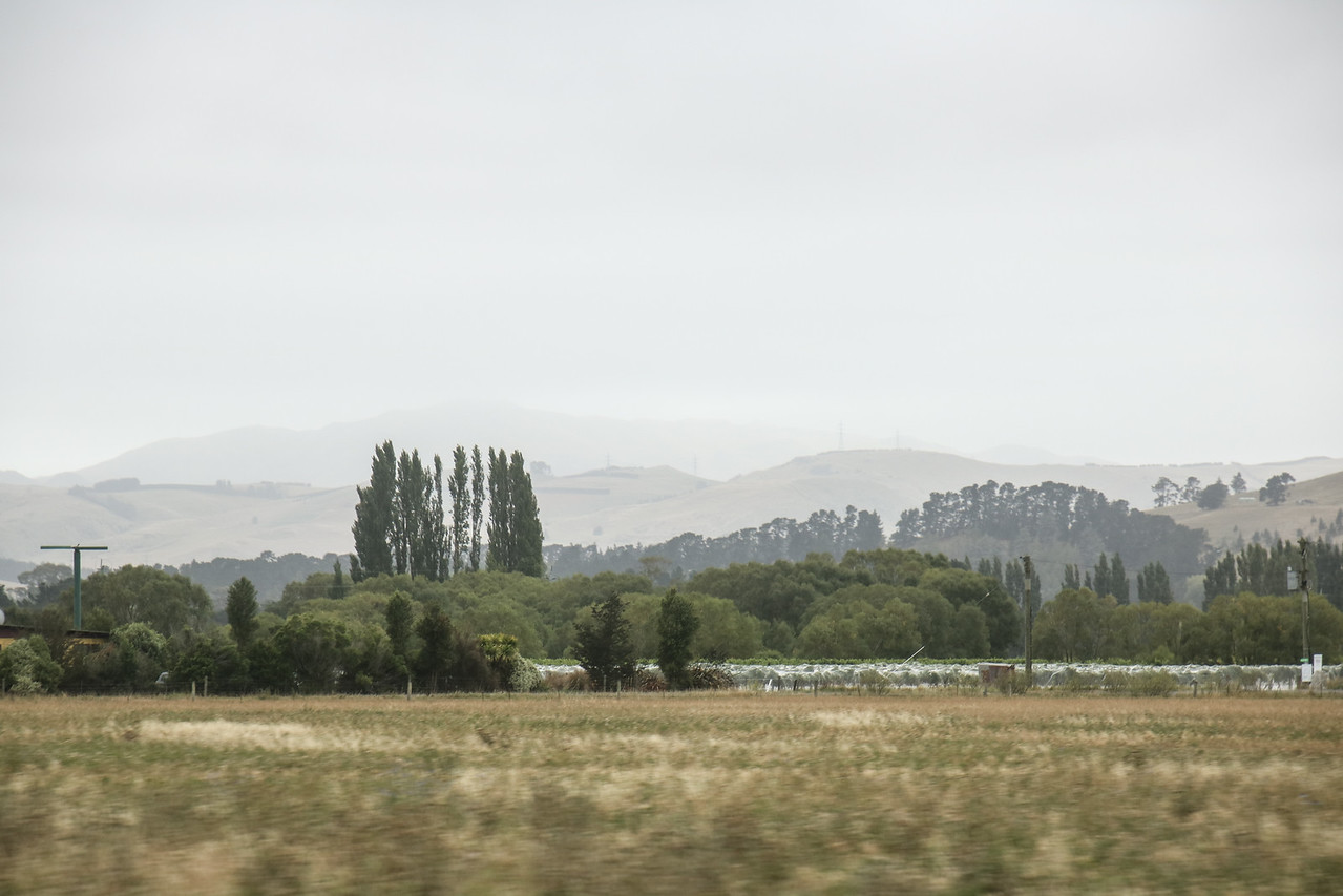 Waipara Wine Trail
