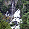 The Tarawera Falls which goes underground in the river above and comes out through the rocks here.