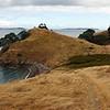 Coastal walk on Waiheke Island 03-2010