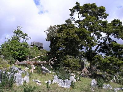 Various Places