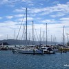 Yachts in Wellington Harbour, Wellington, New Zealand in January 2017
