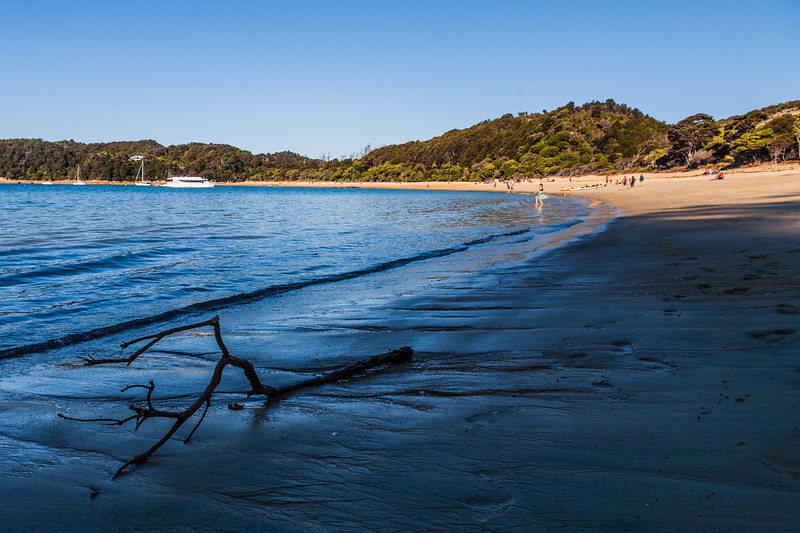 The beach at Anchorage in Abel Tasman National Park, New Zealand