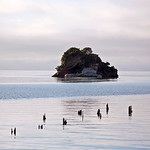 Cook Strait Collingwood New Zealand