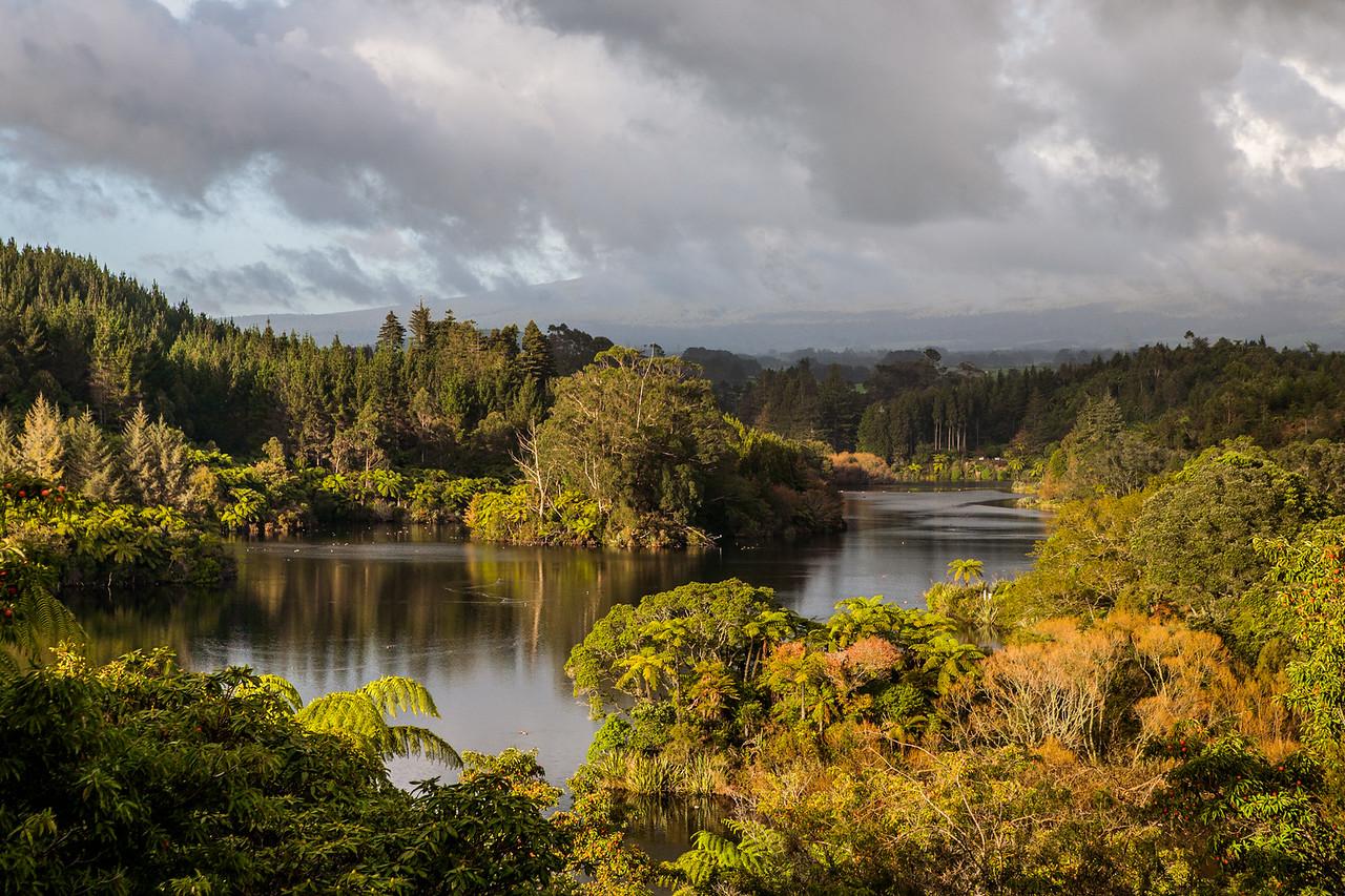 Borgess Park, Taranaki, New Zealand