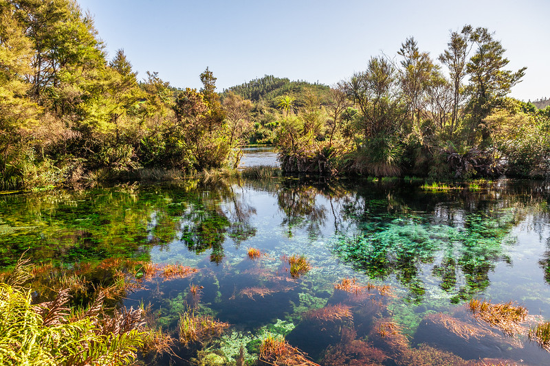 Waikoropupu springs, commonly called Pupu springs, New Zealand
