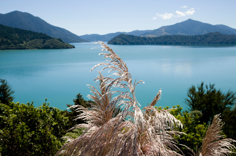 View Marlborough New Zealand