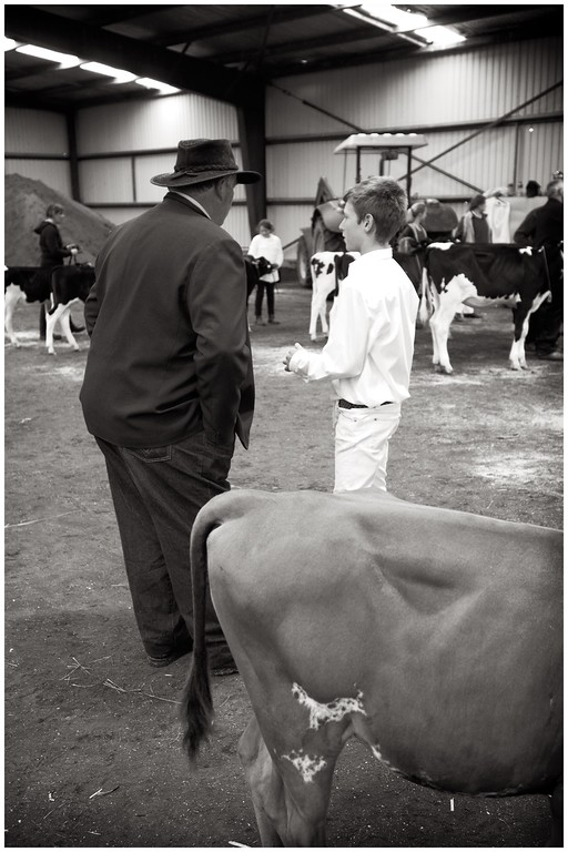 Hawera A and P Agricultural Show , Hawera, New Zealand