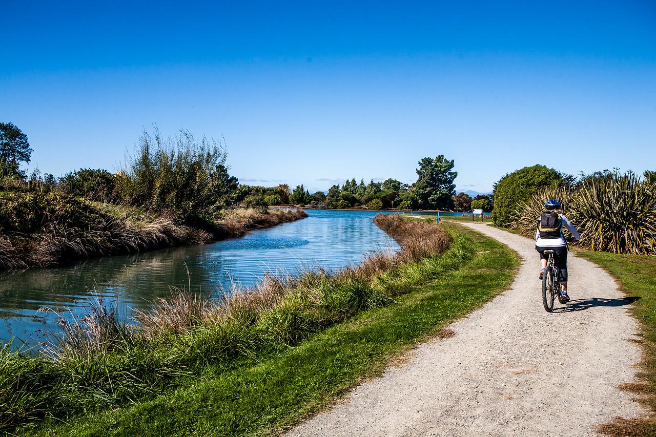 Thorp Bush, Motueka, New Zealand