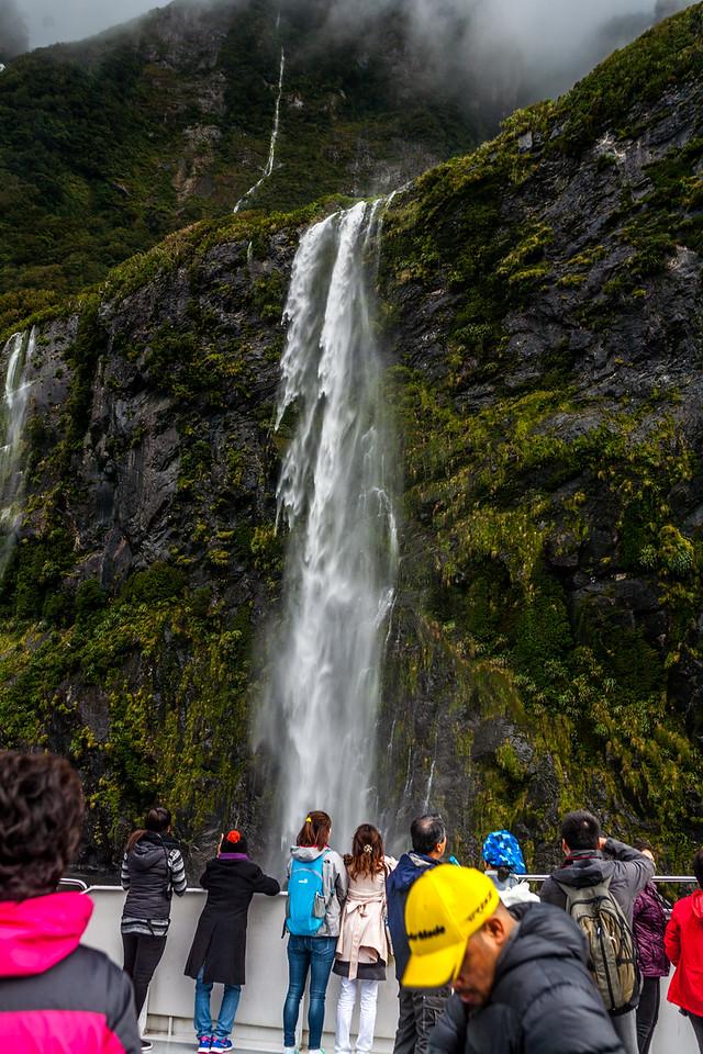 Milford Sound, Fiordland NP, New Zealand