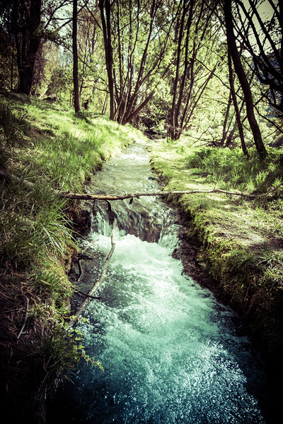 A Stream in Arrowtown