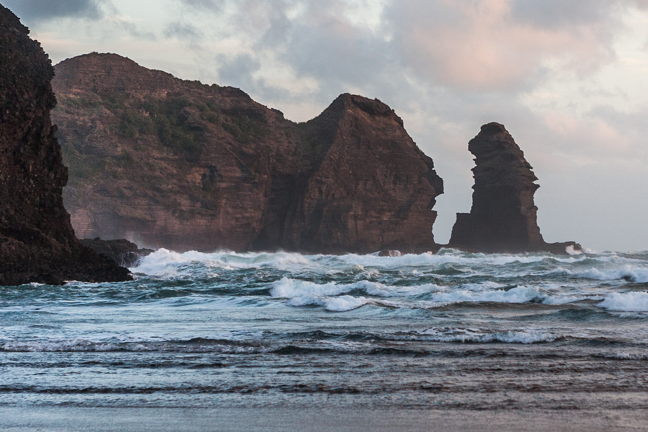 Lion Rock, Piha beach; New Zealand; Auckland