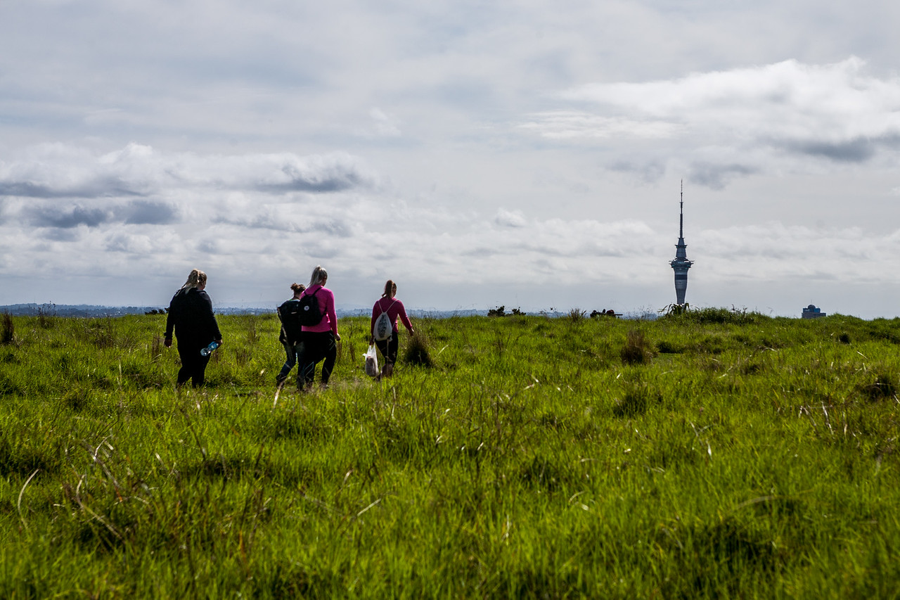 View of the sky tower, on the coast to coast walkway at Mt Eden, Auckland, New Zealand