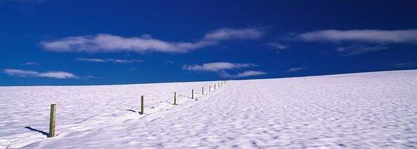 Snow fields in the Mackenzie country