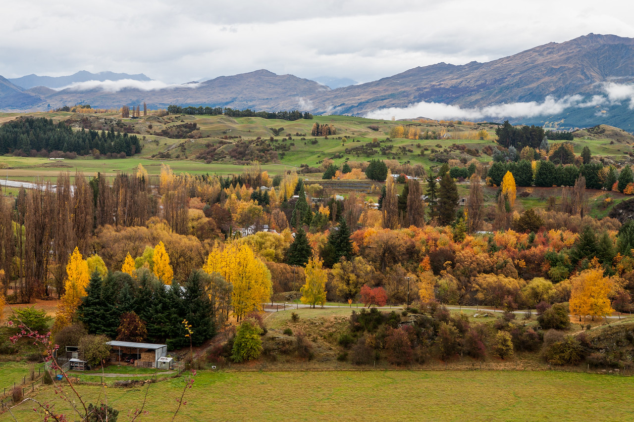 Panoramic view of Vineyards and farms around Arrowtown