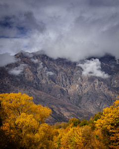 Fall Color in the Remarkables