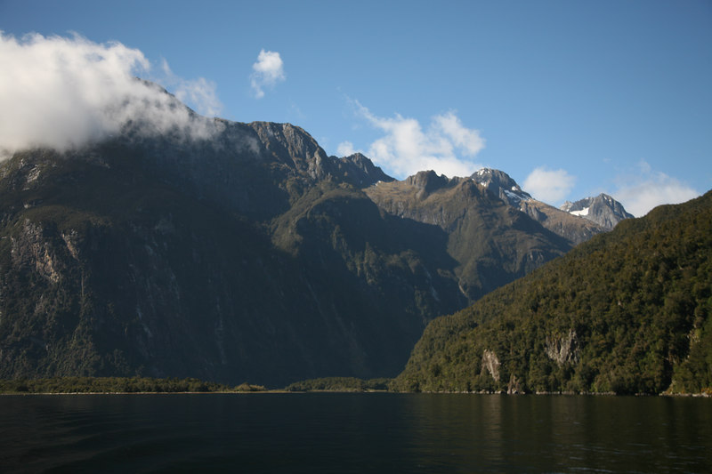 Milford Sound.  South Island.  New Zealand.