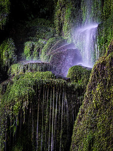 Moss and waterfall - Queenstown