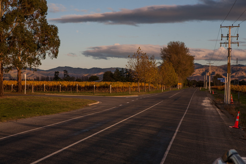Driving through the vineyards in Marlborough, the wine country of New Zealand