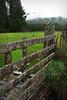 Fuzzy Fence