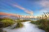Estero Island  Beach 5839 a