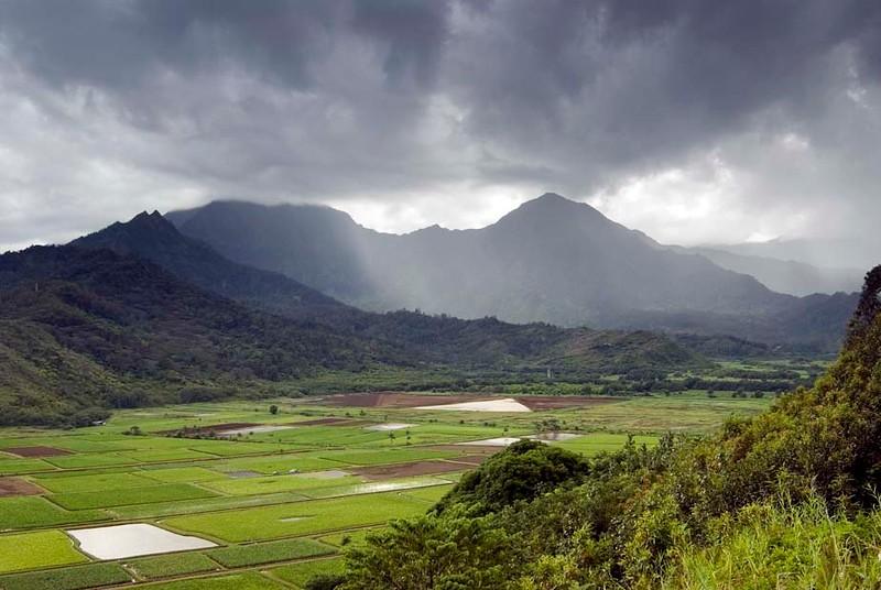 Kauai, Hawaii Scenics, Critters and Flowers