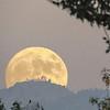 MarkM_Super Moon