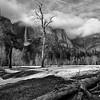 David-Yosemite1