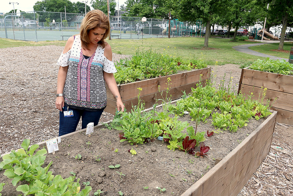 """. A new community garden, they are calling \""""Shelbie\'s Seed of Promise,\"""" was recently planted at Father Maguires Park in memory of Shelbie Murphy. Shelbie\'s mom Jackie Murphy looks over the garden Friday. SUN/JOHN LOVE"""